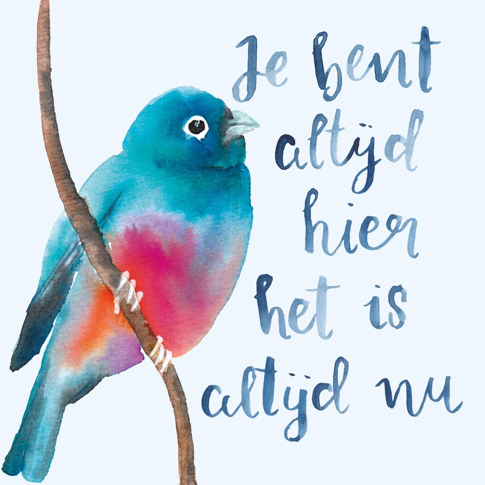 vogel illustratie leven in het nu petra van dreumel